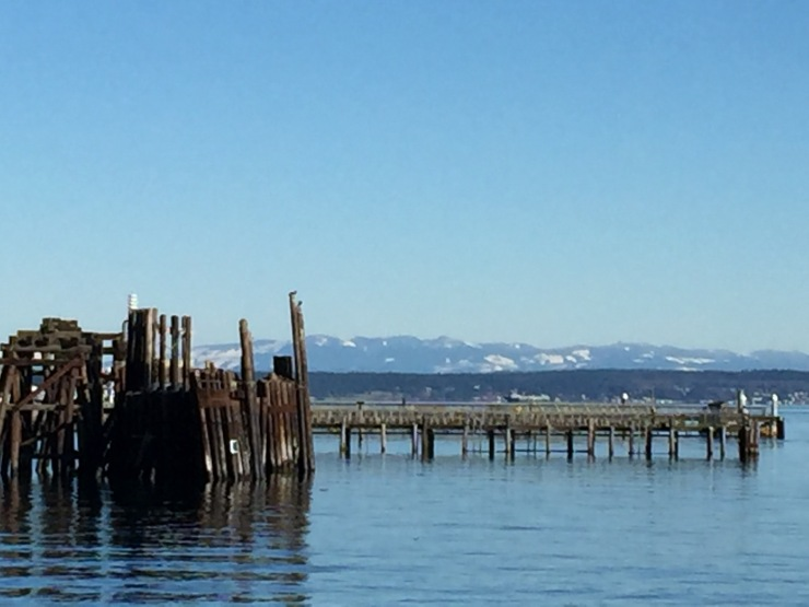 Port_townsend_olympic_national_park